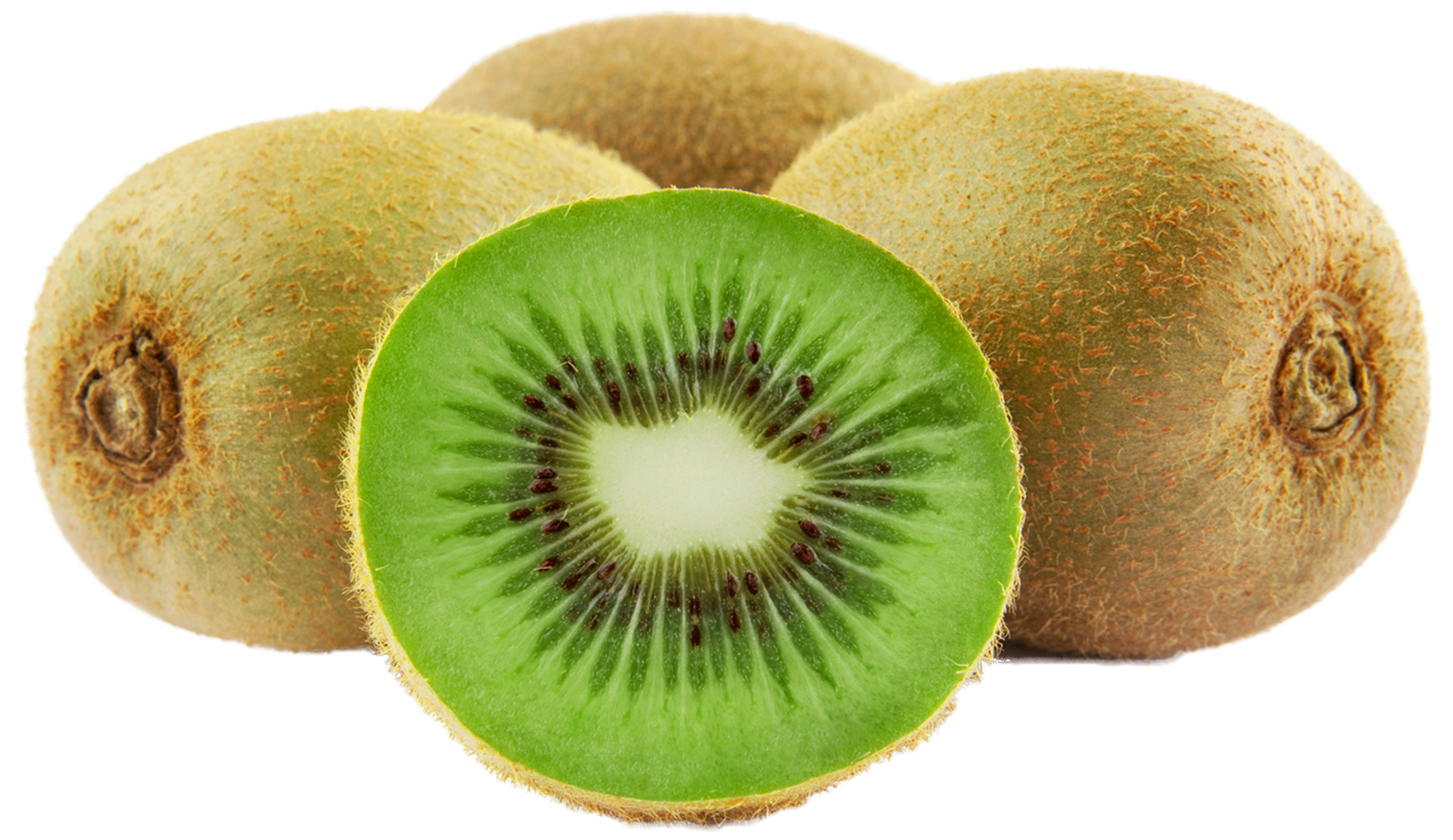 Kiwi png. Large frut clipart gallery