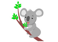 Koala clipart. At getdrawings com free