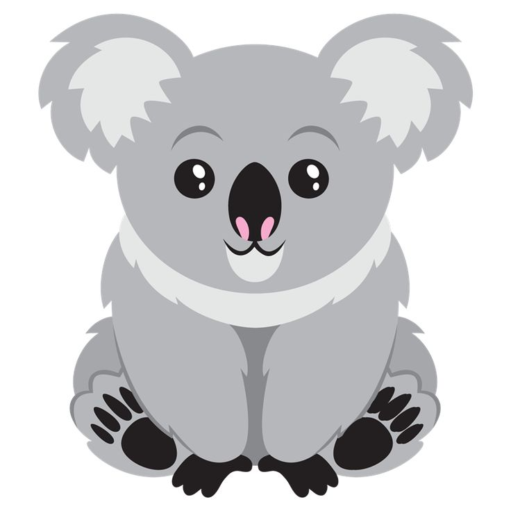 Koala clipart. Best theme safari animals