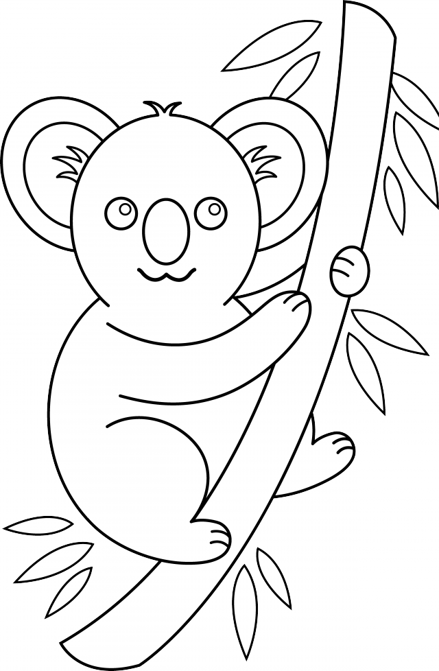Koala clipart black and white. Free outline download clip
