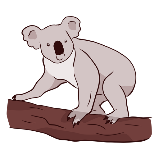 Koala clipart branch. Ear leg nose illustration