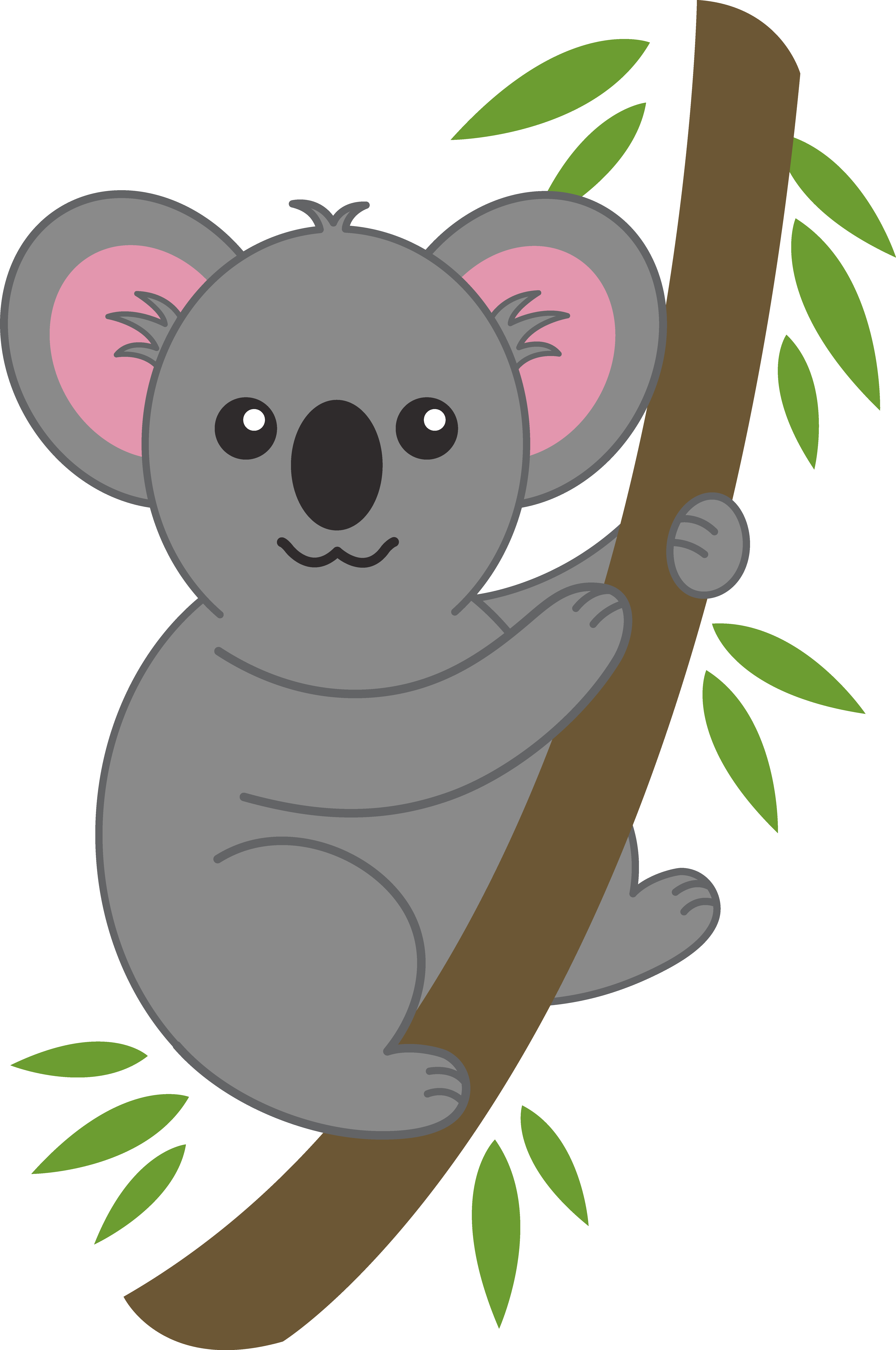 Koala clipart easy. Animal