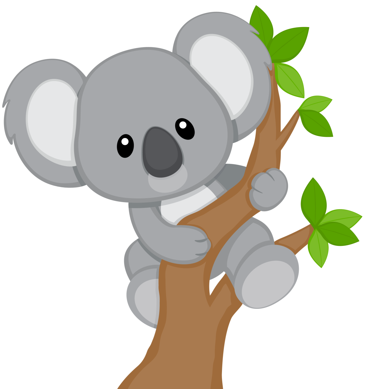 Png images of koala bear