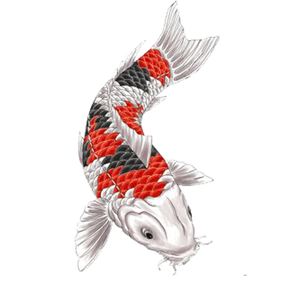 Koi fish png. Tattoo image