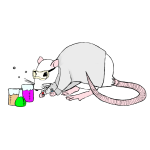 Lab rat png. Pouring salt in your
