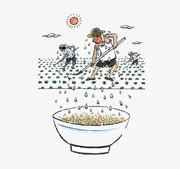 Labor clipart harvest crop. Farmer sweat food png