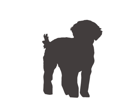 Dogs vector golden doodle. Goldendoodle silhouette at getdrawings