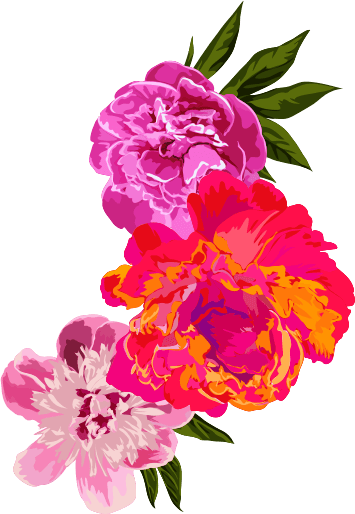 Lace clipart flower indian. Home rudra the best