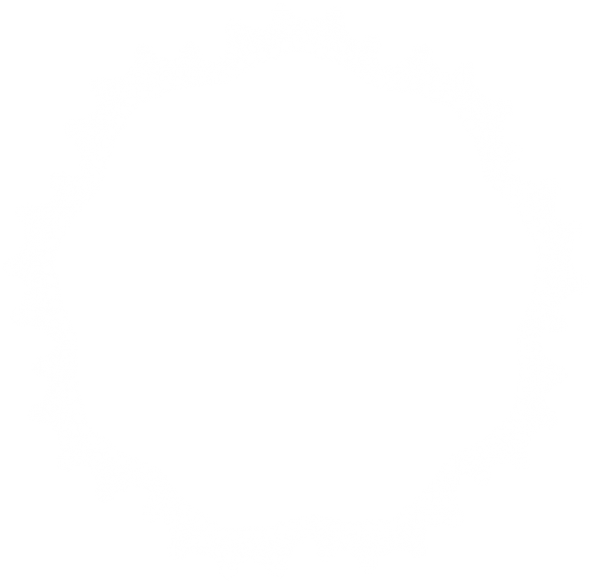 Lace clipart grey lace. Download round border frame