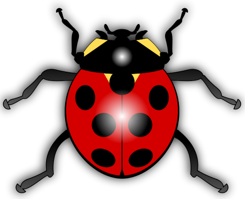Ladybugs clipart simple. Everything ladybug the source