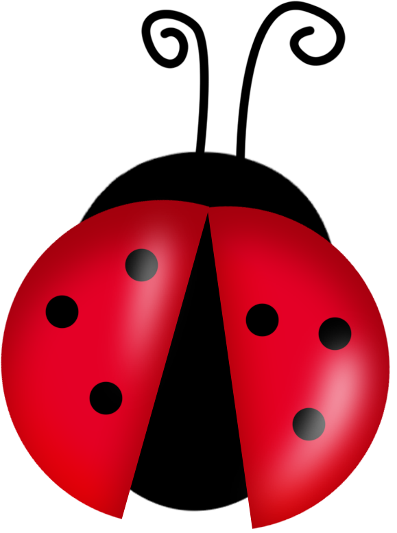 Vector insects cute. Ladybugs clipart buscar con