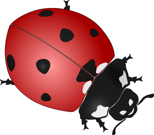 ladybug clipart butterfly