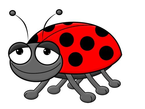 Ladybug clipart let's celebrate. Best joaninhas images