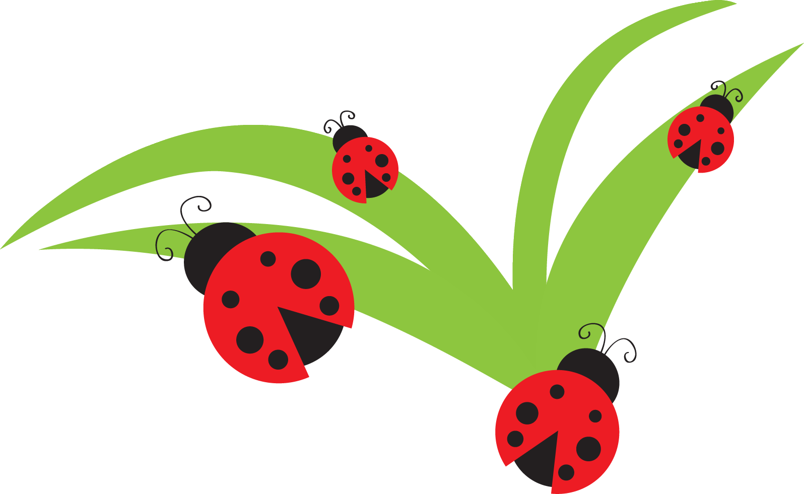 Bug ladybug lady clip. Leaf clipart insect banner black and white library