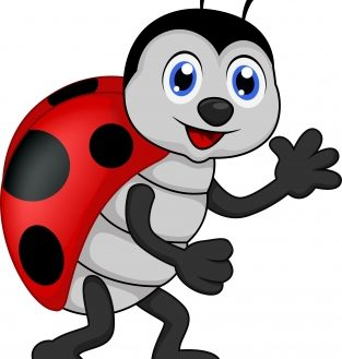 Ladybugs clipart kid. Ladybug pictures for kids