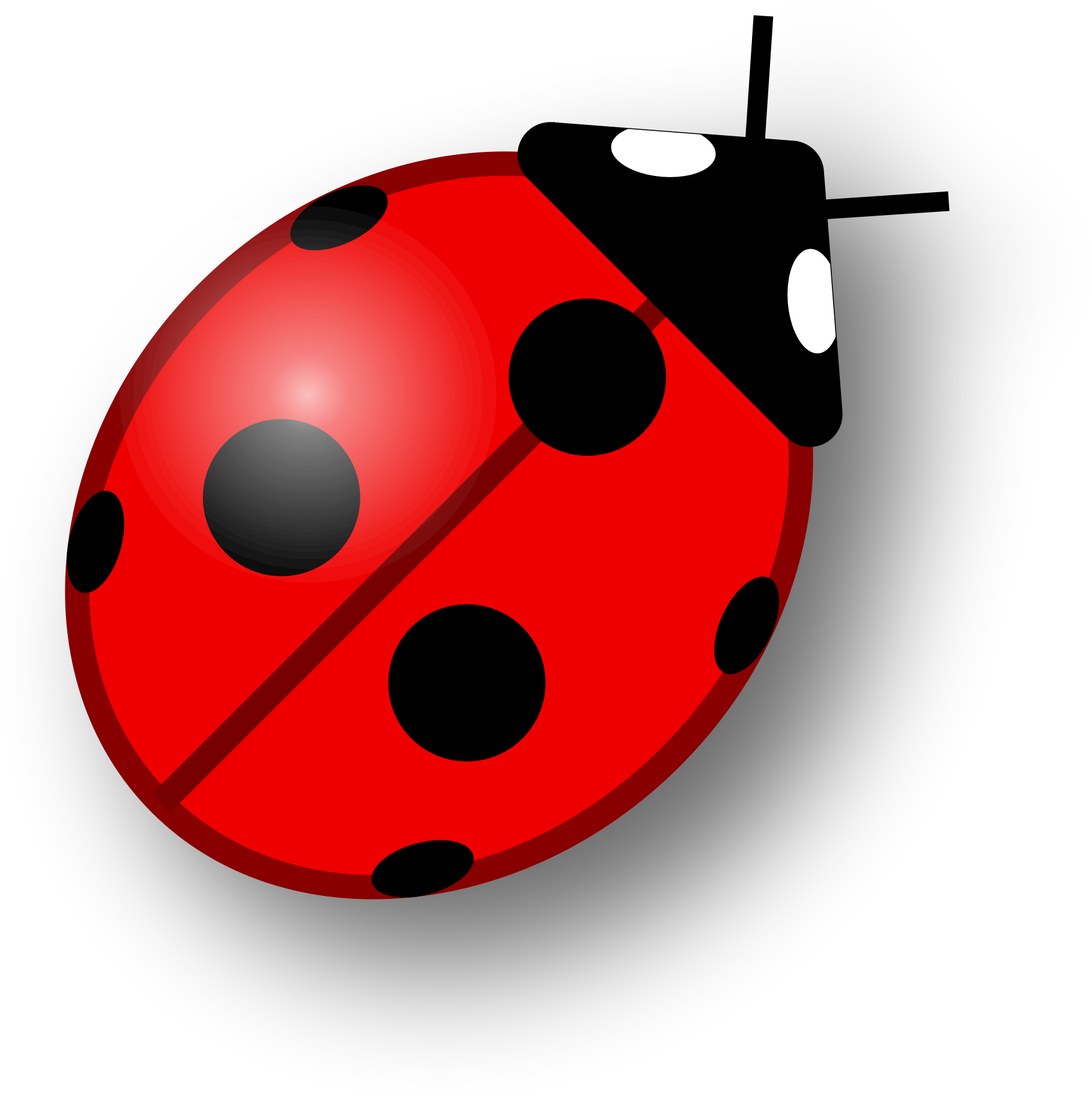 Ladybugs clipart simple. Ladybug on leaf affordable