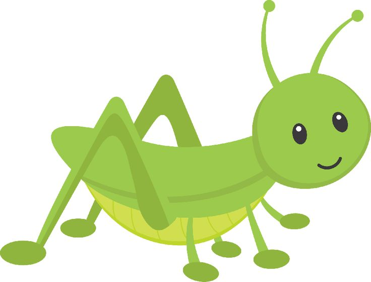 Ladybugs clipart trail. The best lady bug