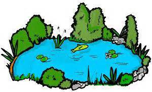 Pond clipart lake. Marvellous design small reeds