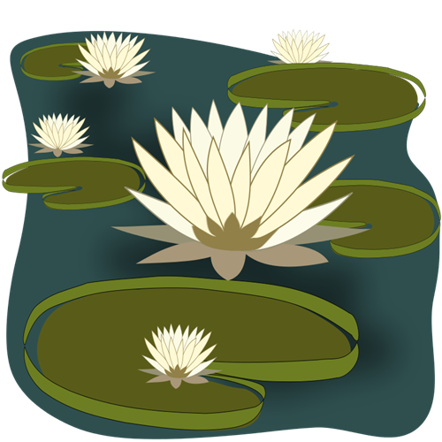 Pond clipart empty pond. Water lily clip art