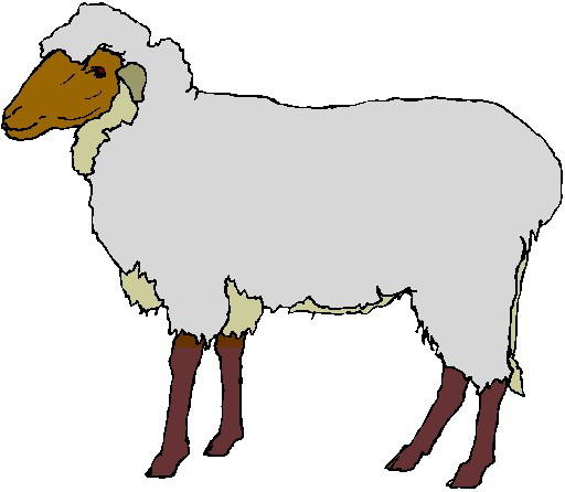 Lamb clipart. Sheep free black and