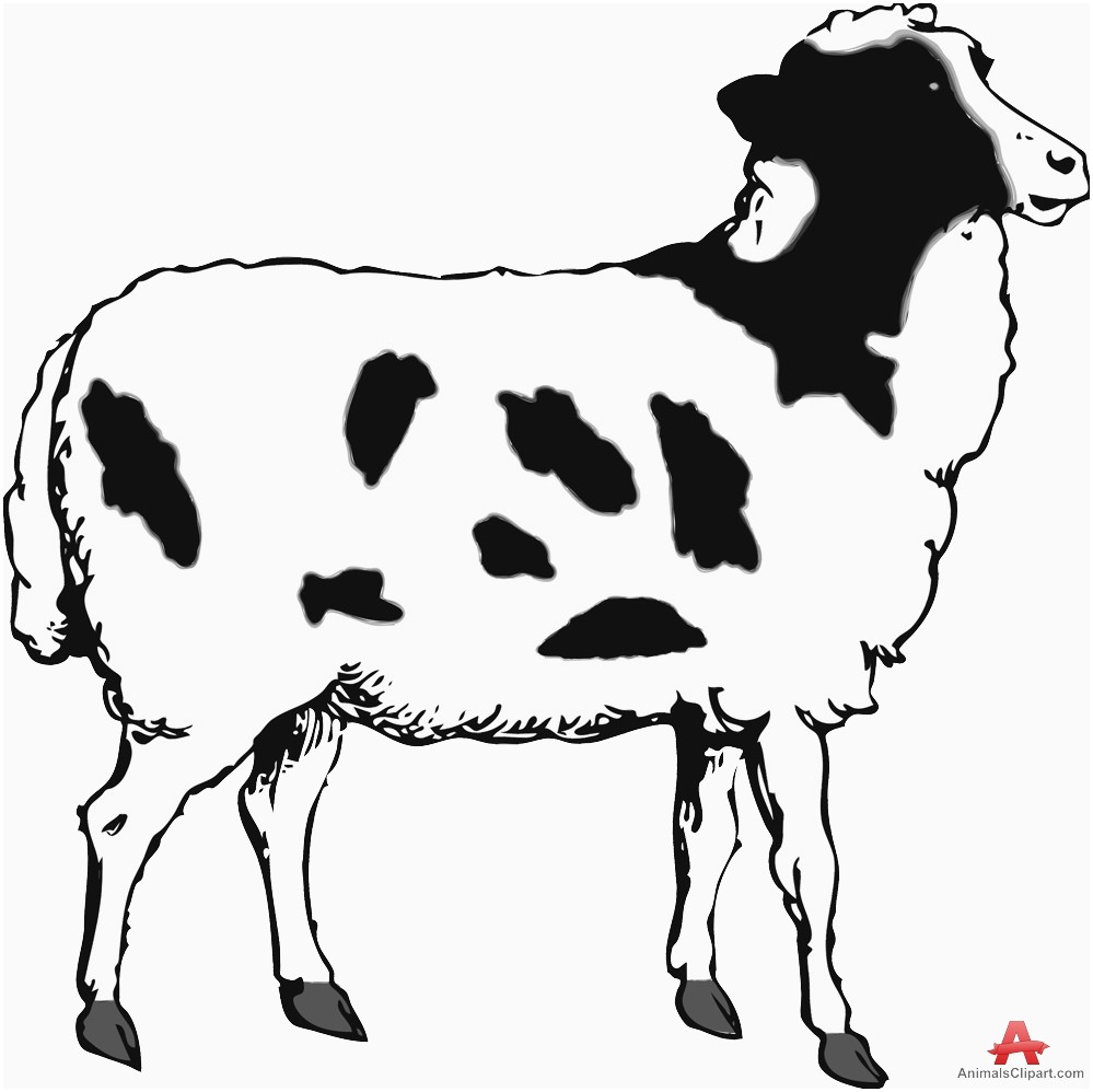 Lamb clipart two. Sheep black and white