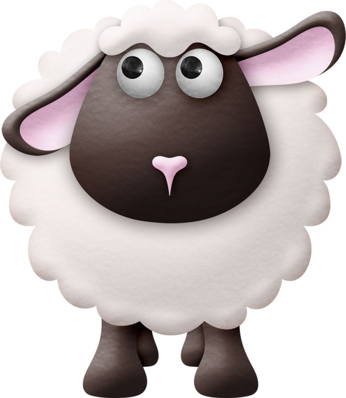 Lamb clipart two. Best sheep images