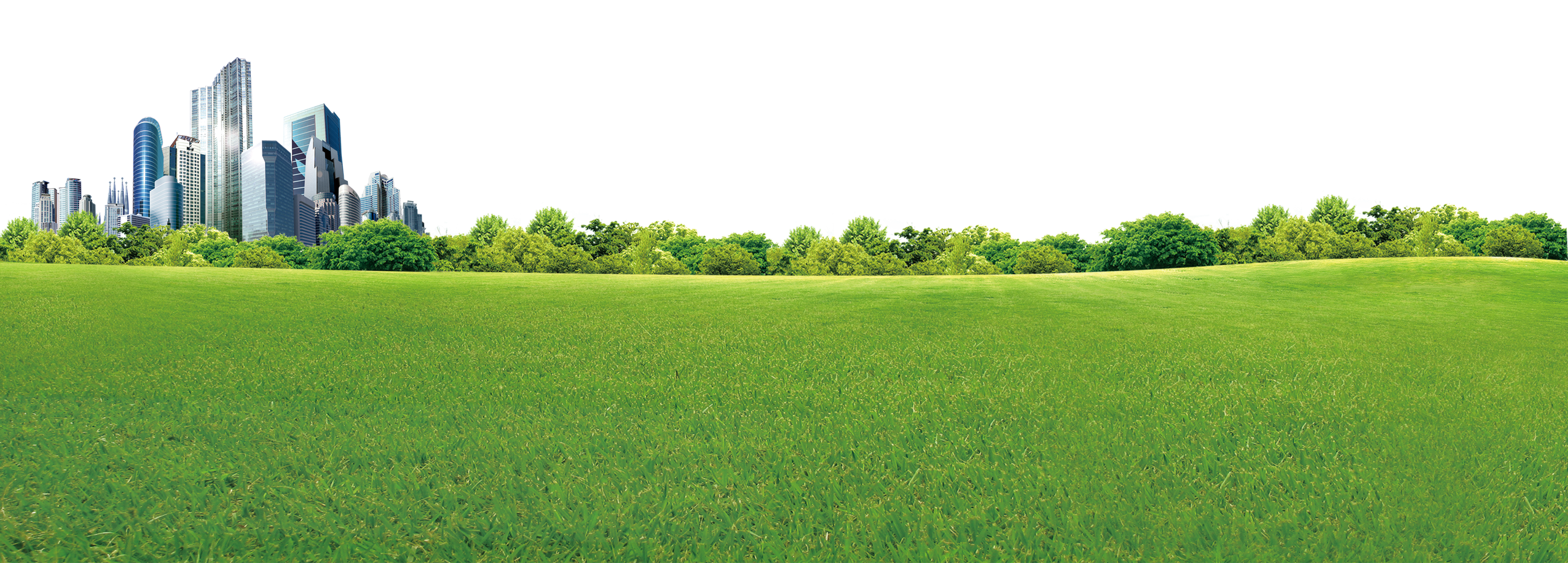 Land vector green field. Crop biome grassland rural