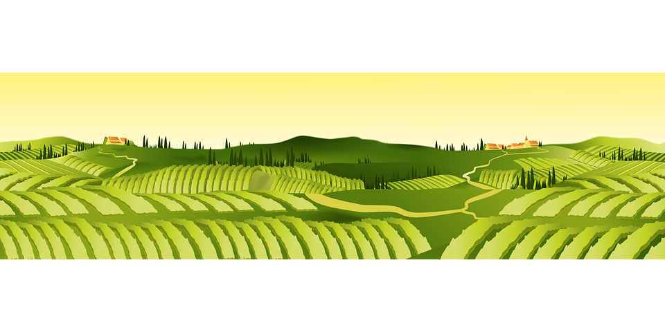 Land vector green field. Agriculture farm agricultural clip