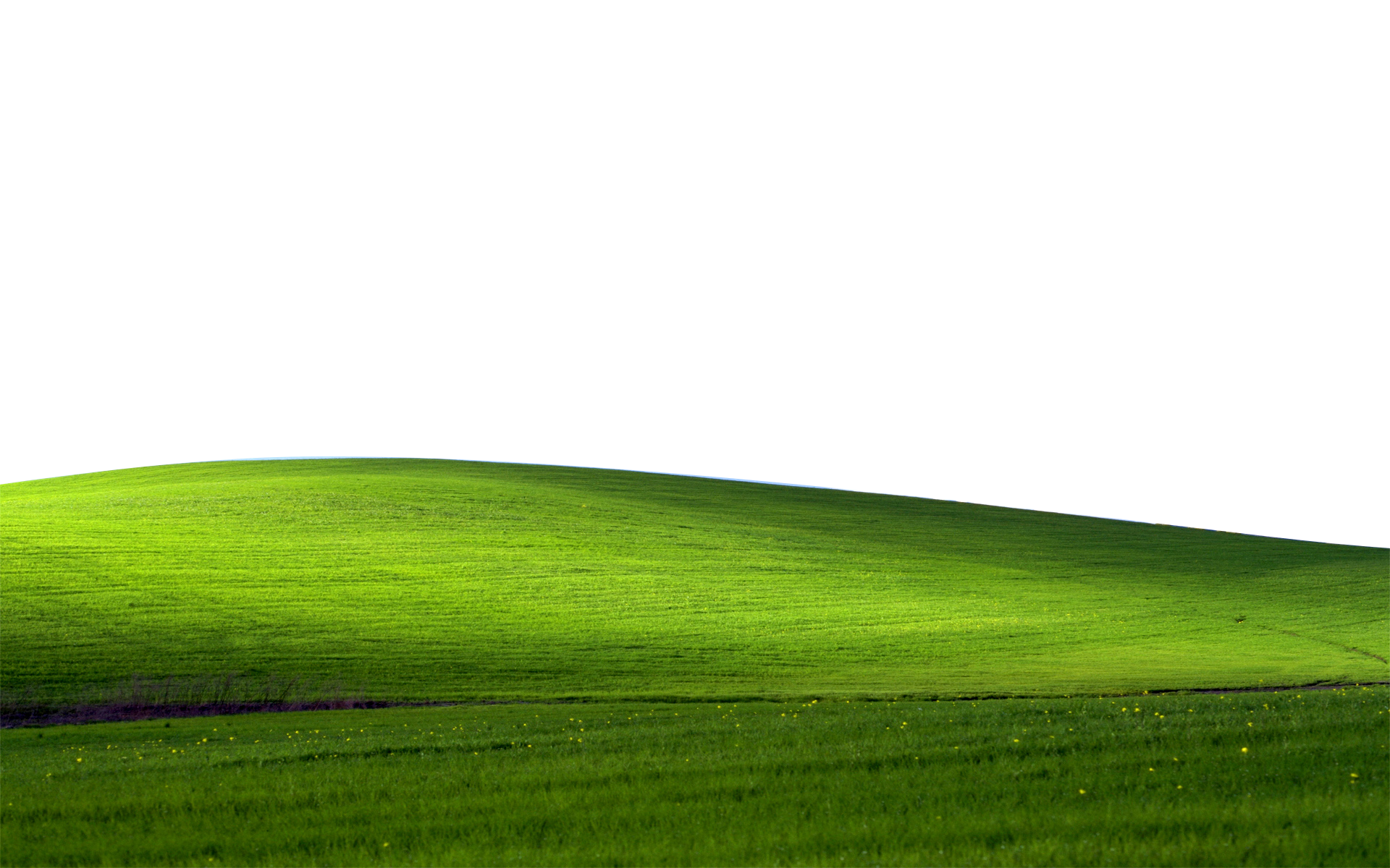 Land vector green field. Hill background png transparent