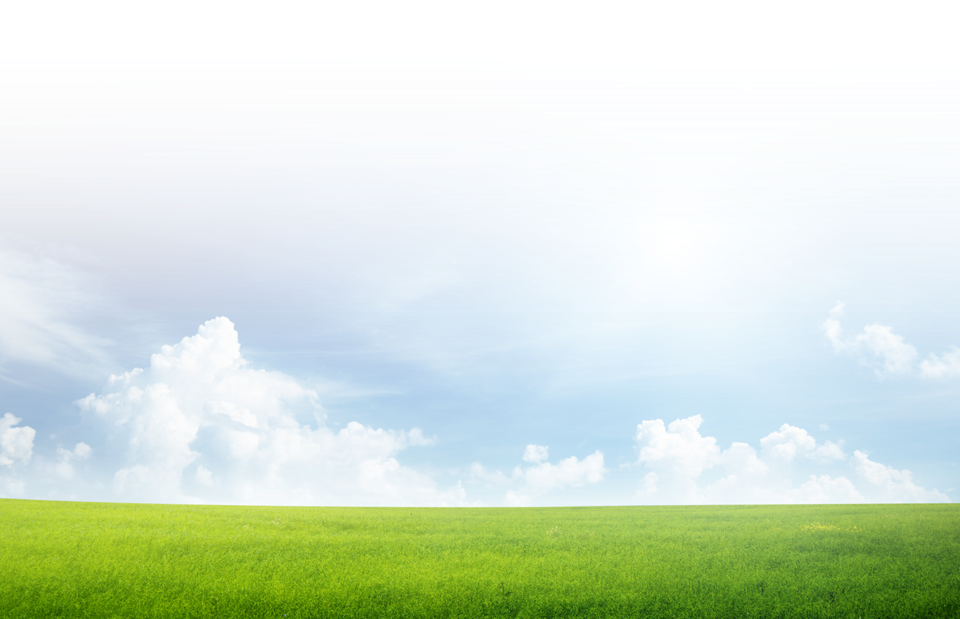 Land vector hills green sky. Grass and png tree