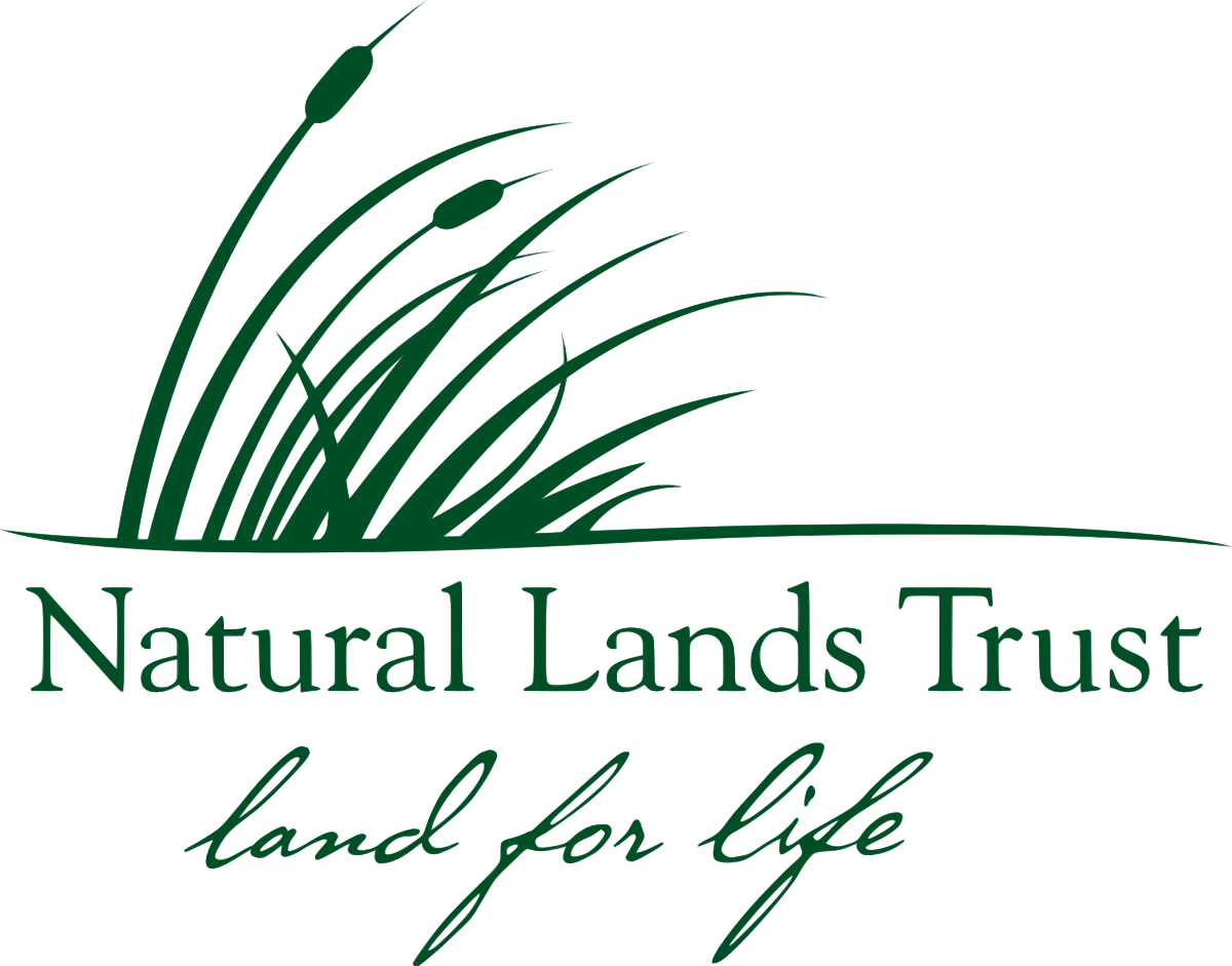 Land vector natural background. Lands trust wikipedia