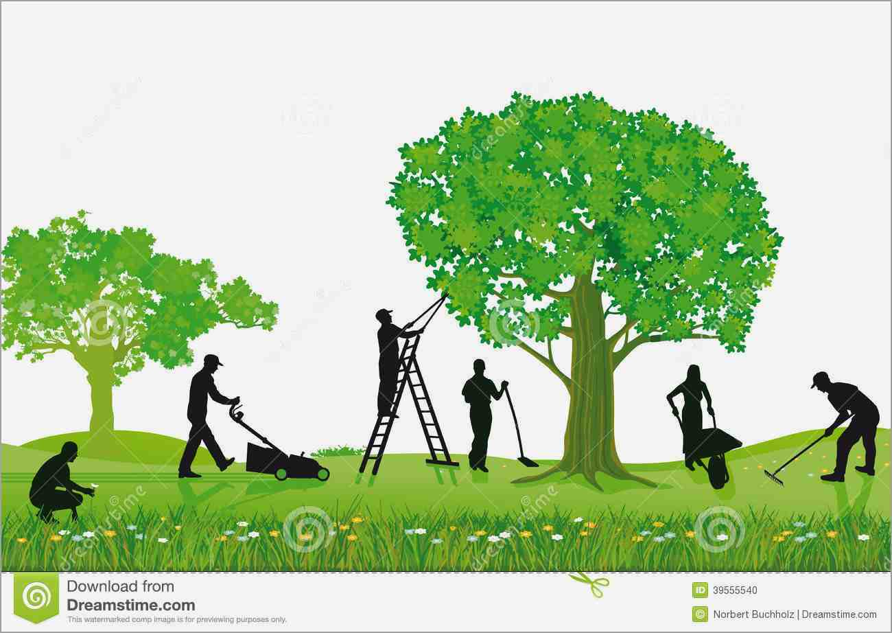 Lawn clipart tree grass. Garden maintenance pencil and