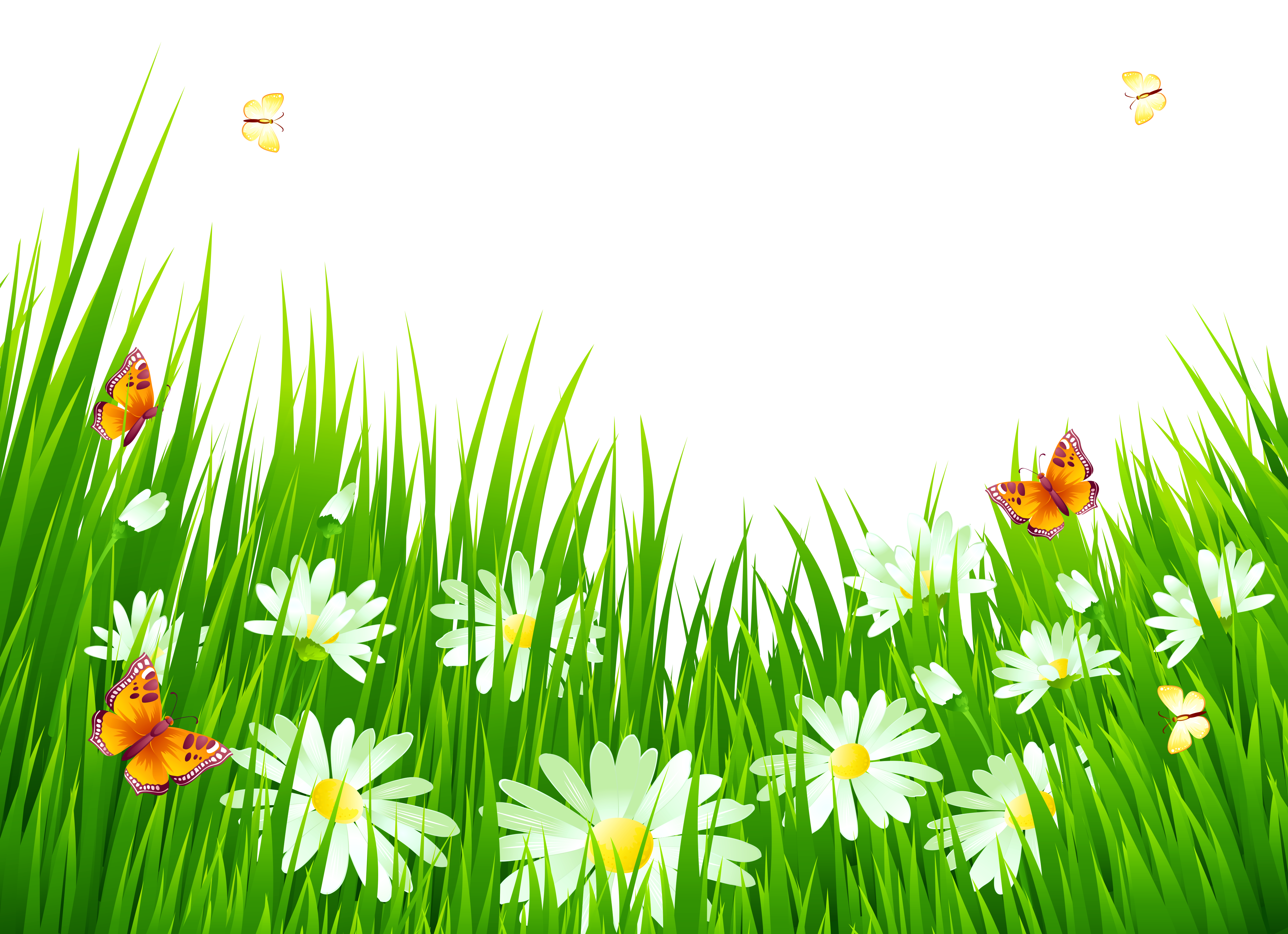 Landscape flowers png. Grass with white clipart