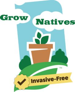 Landscaping clipart invasive plant. Inpaws without plants our