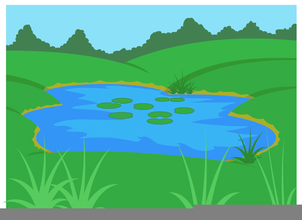 Landscaping clipart pond grass. Duck in free images