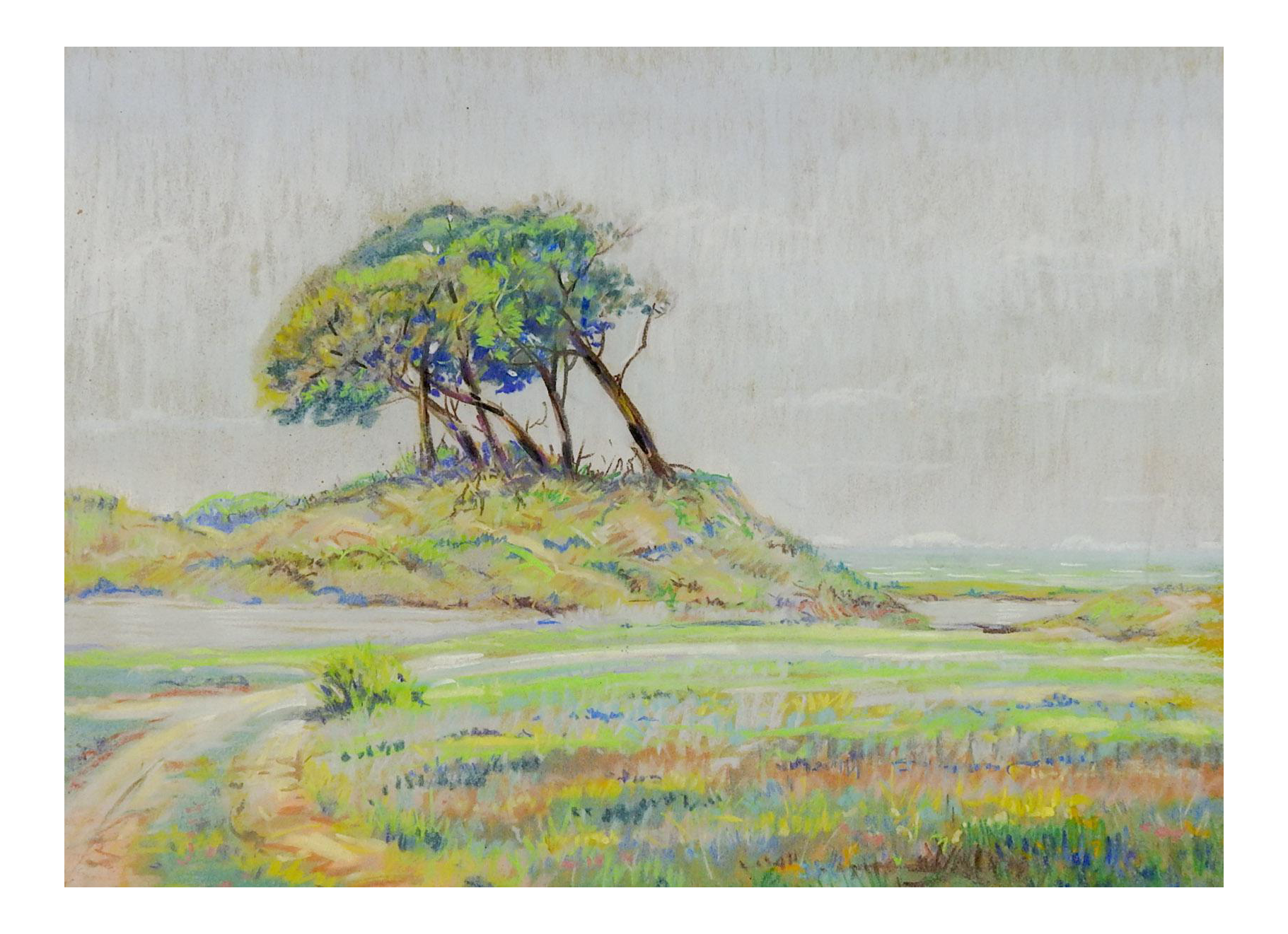 Landscaping drawing vintage. Windswept trees pastel by