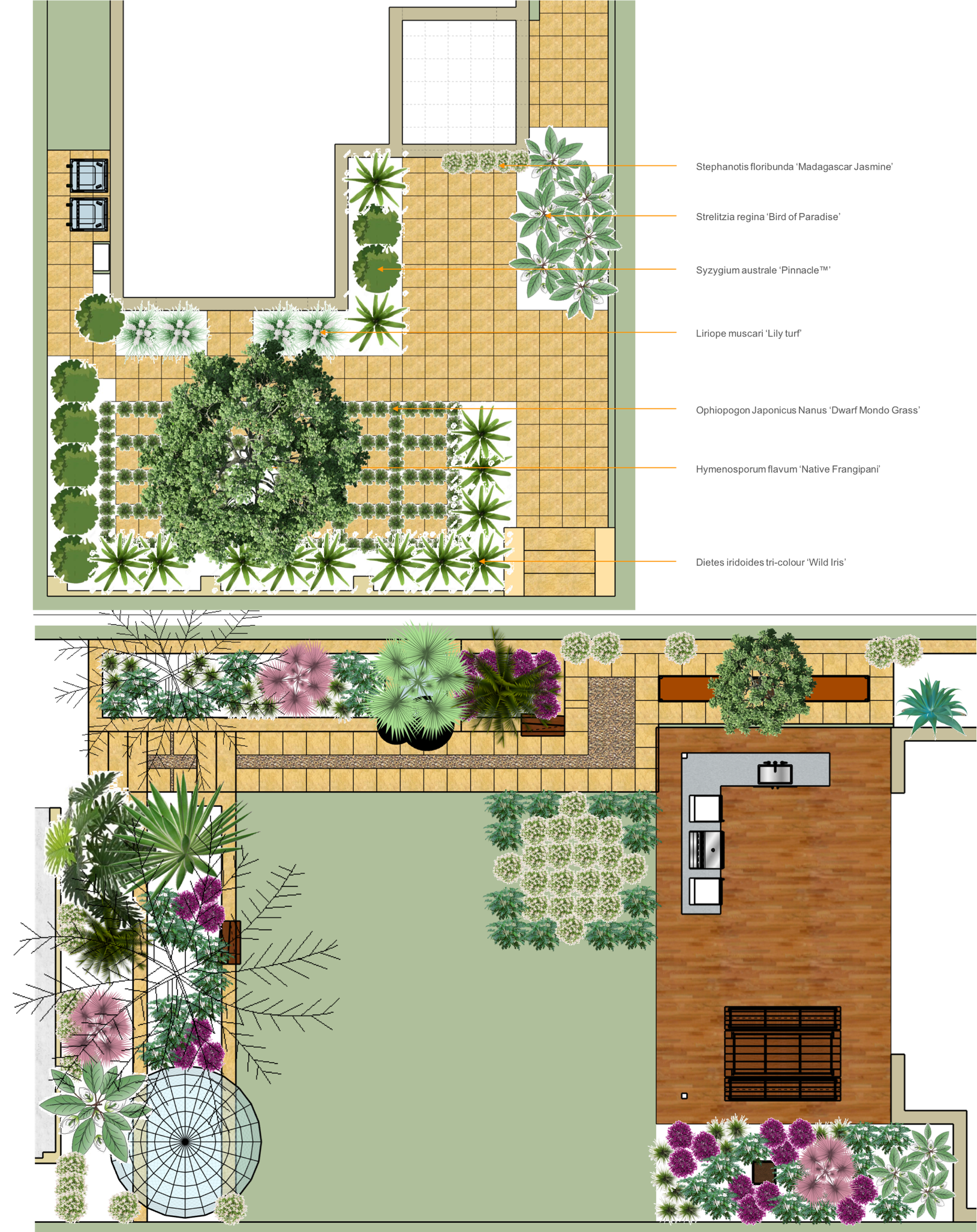 Landscaping drawing simple. Como project d landscape