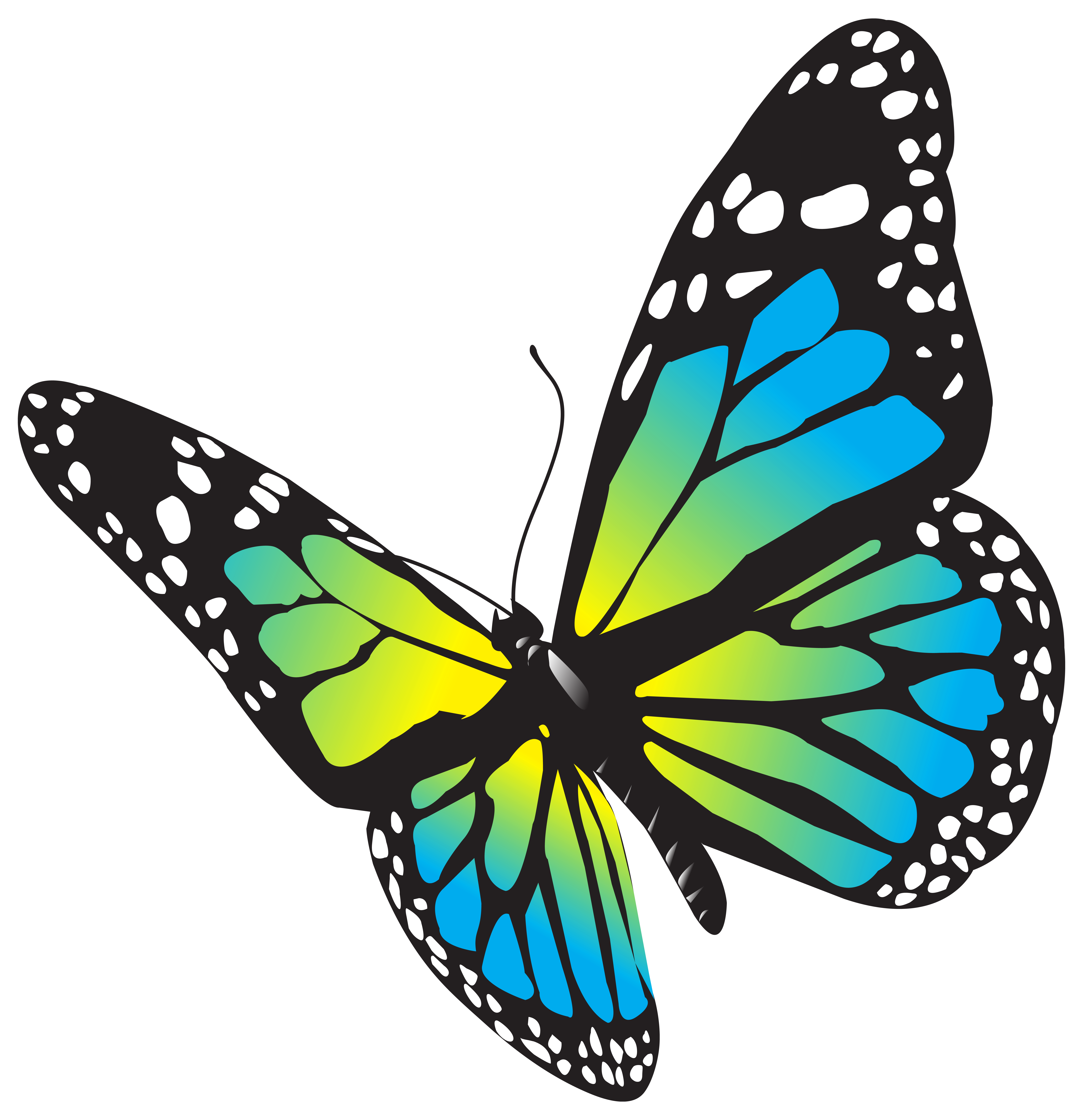 Large clip butterfly. Png art image gallery