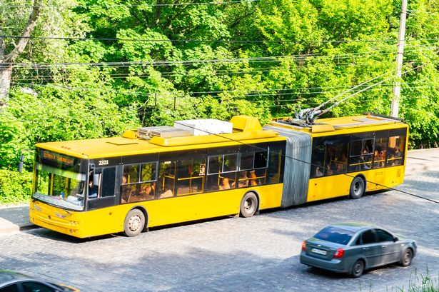 Large trolleybus. Why a network could