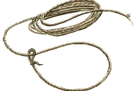 Lasso rope png. Download wallpaper clipart full
