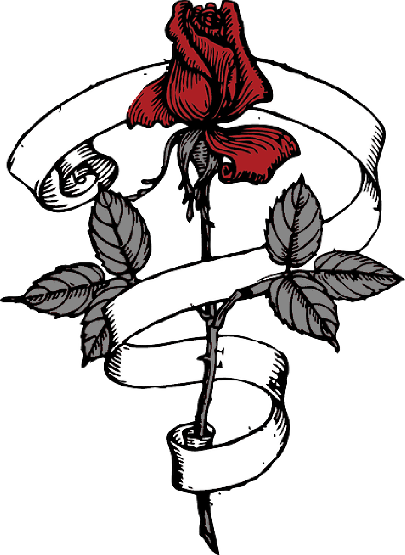 Latest drawing flower. Image scroll tribal outdfdfdline