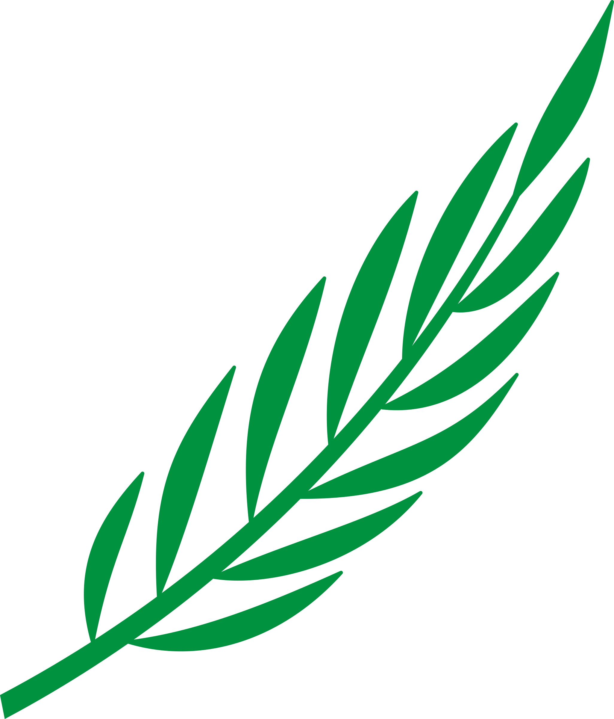 Laurel branch png. Icons free and downloads