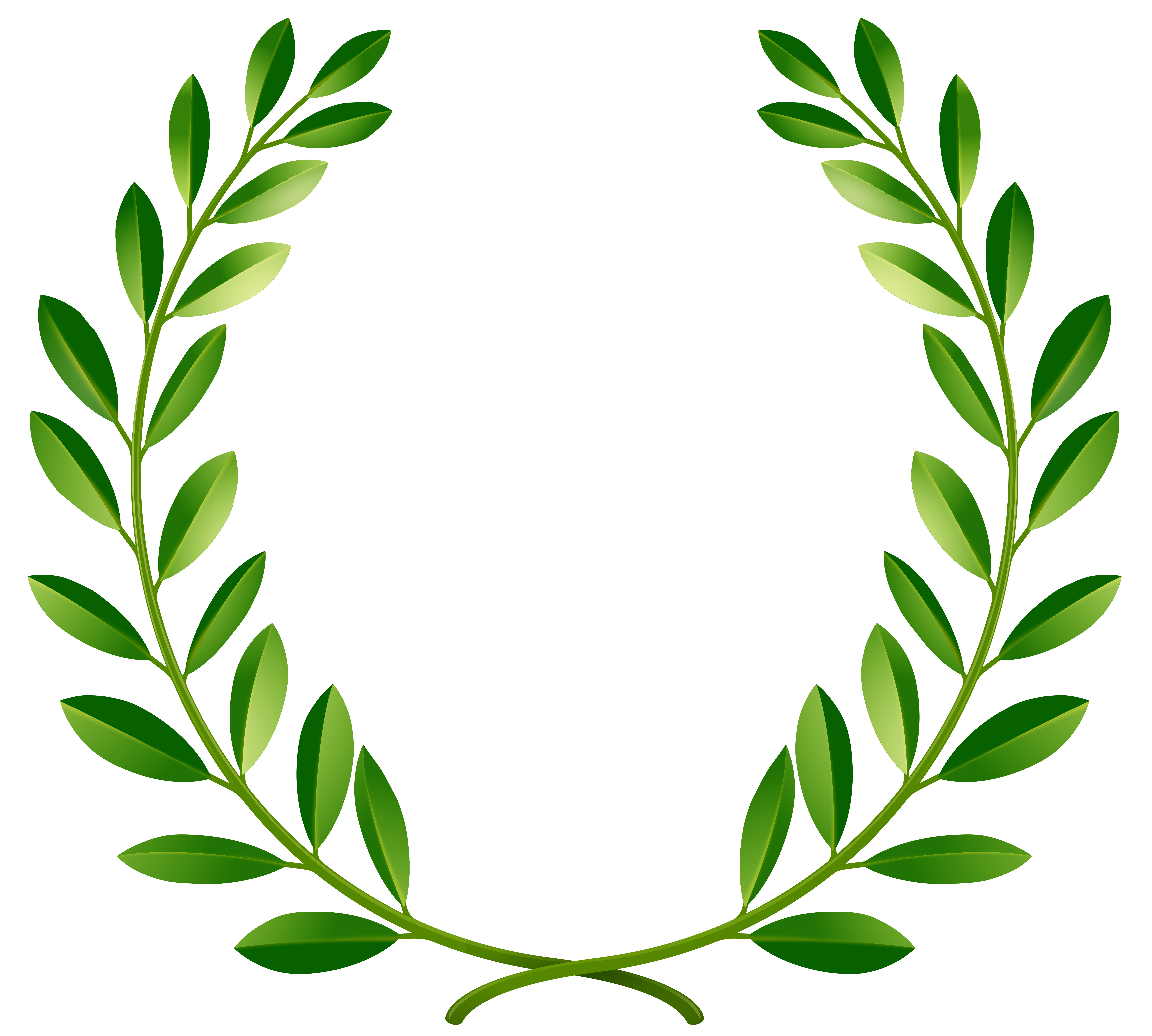 Laurel clipart. Green leaves png clip