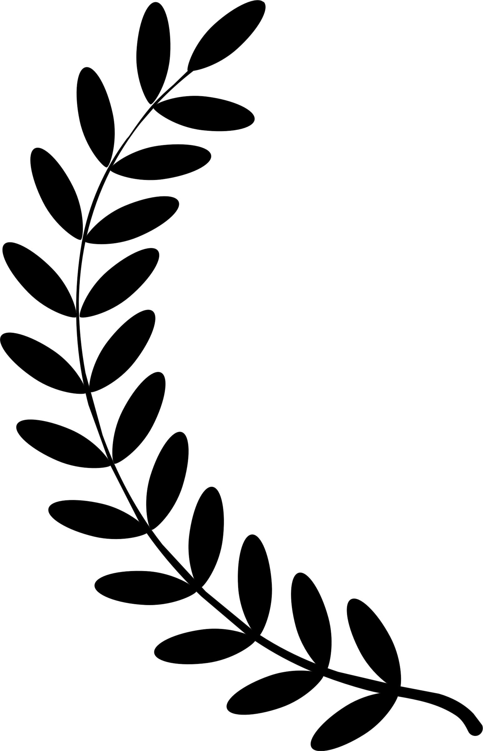 Wreath single twig clip. Laurel clipart pdf png black and white