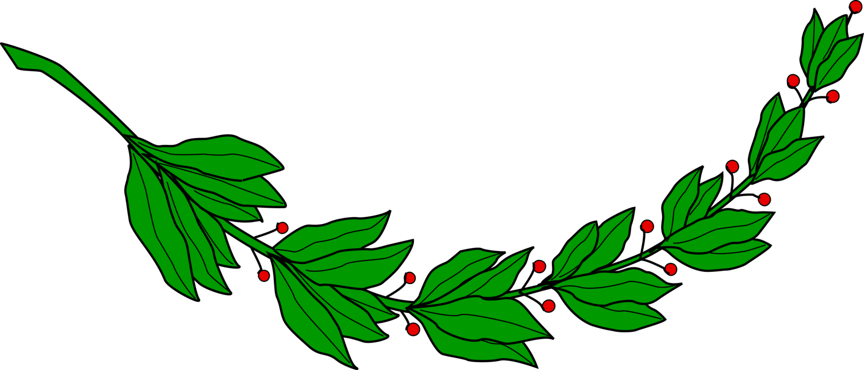 Laurel clipart leaf stem. Wreath computer icons bay