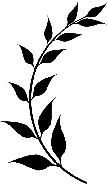 Laurel drawing. Half clip art at