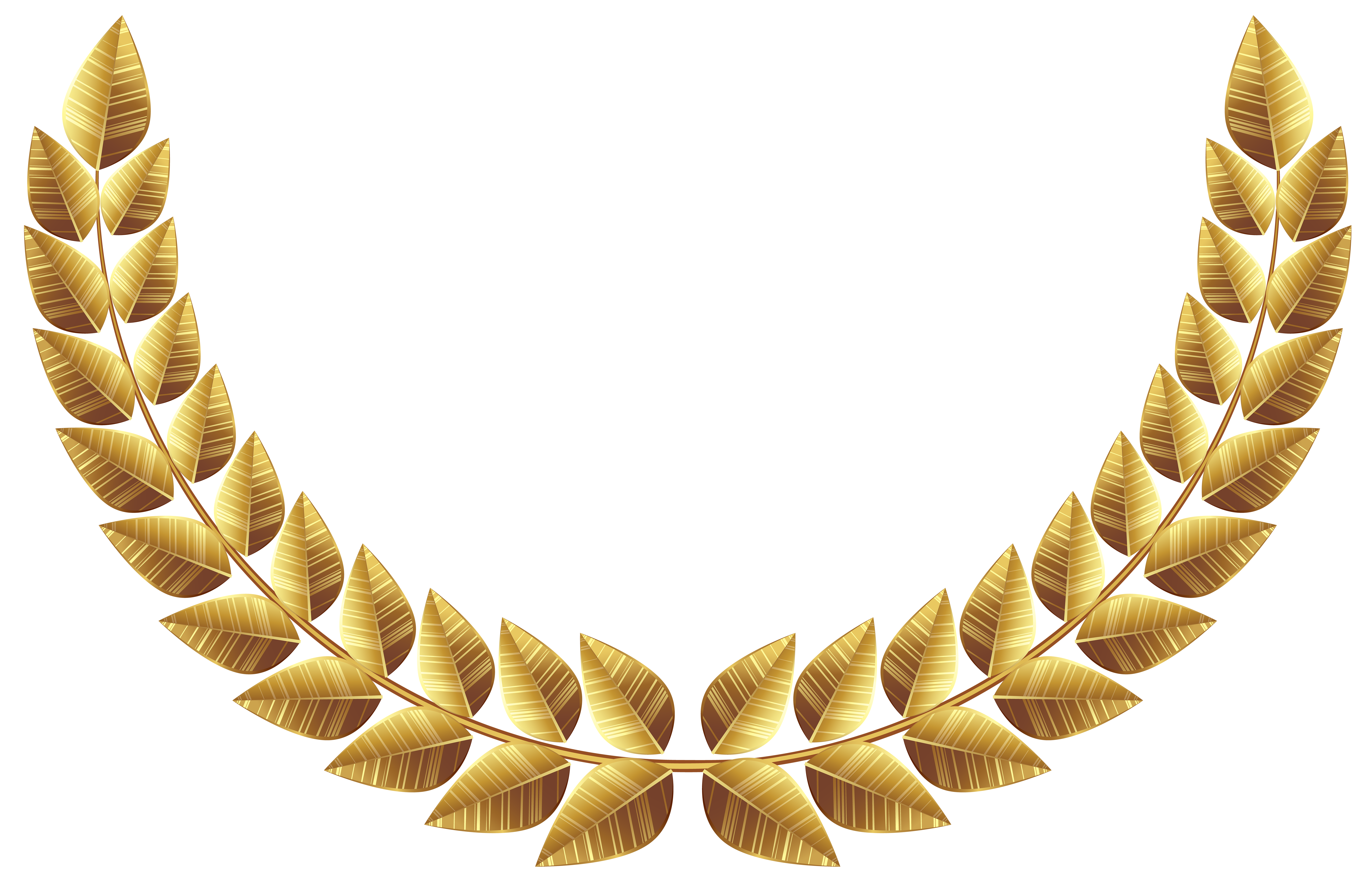 Laurel leaf png. Leaves transparent image gallery