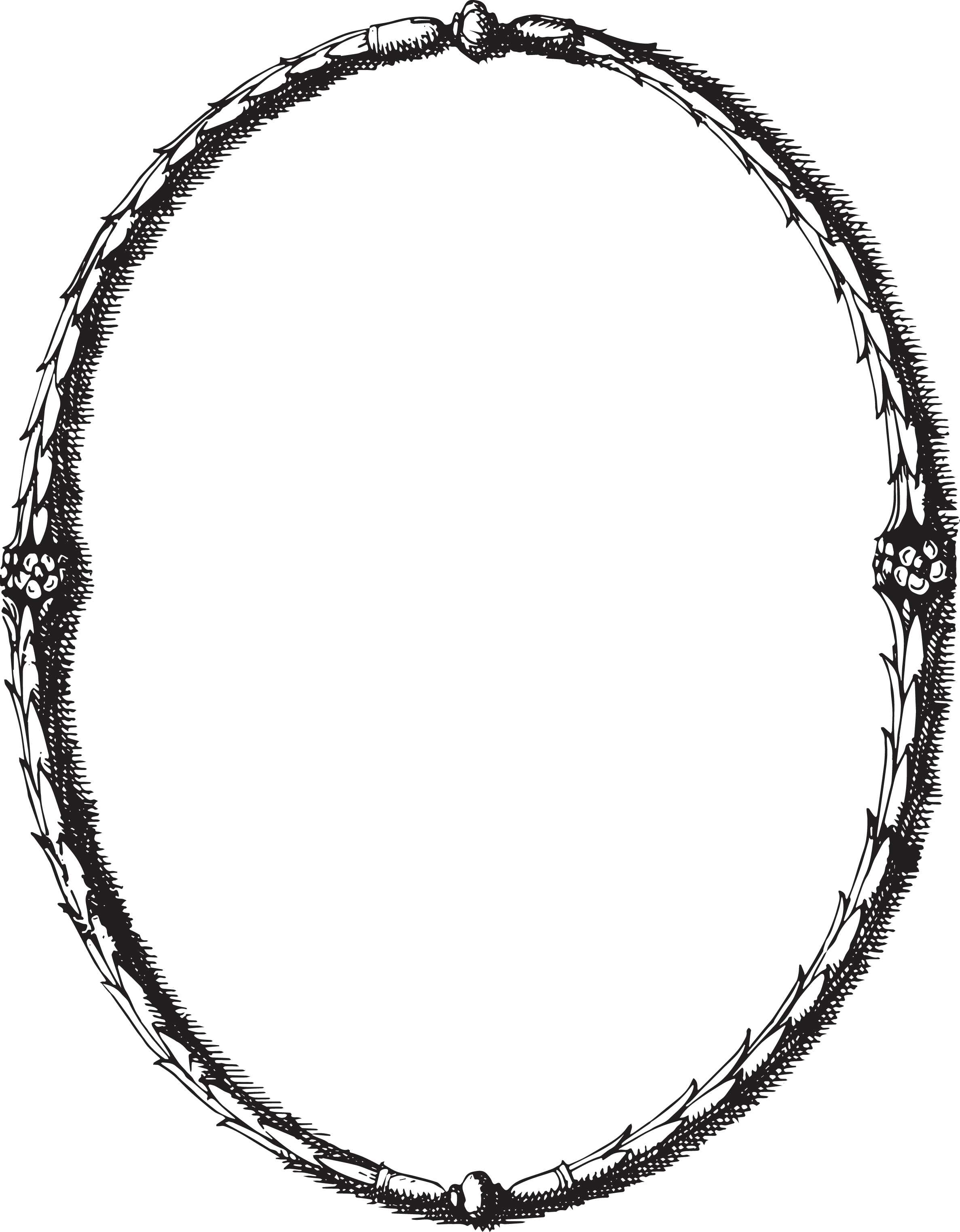 Circular saw blade png vecteezy. Laurel wreath google search