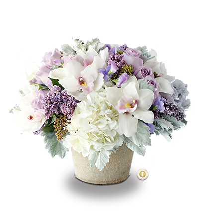 Lavender flowers png. Soft sweet by the