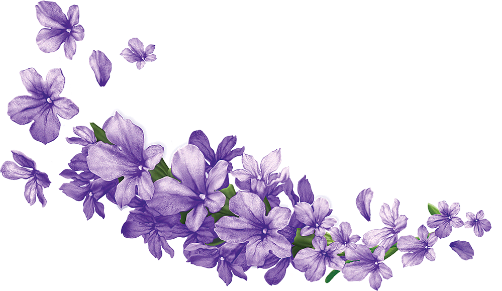 Transparent lavender. Image png animal jam